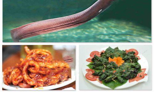 Cá ninja và chế biến món ăn