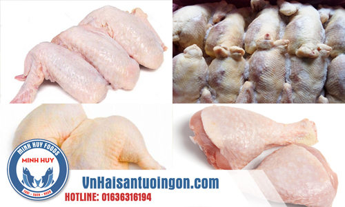 Cung cấp đùi gà tỏi, đùi góc tư, cánh gà, chân gà, gà giai nhập khẩu