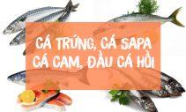 Cá trứng cá sapa, cá cam và đầu cá hồi