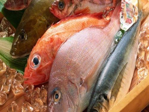 Cá cung cấp nhiều chất dinh dưỡng cho cơ thể, tuy nhiên người tiêu dùng nên hạn chế sử dụng các loại cá chứa hàm lượng thủy ngân cao.
