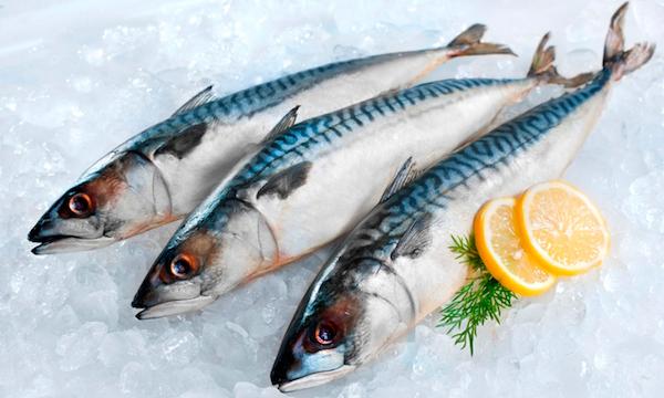 Loại cá chứa ít thủy ngân