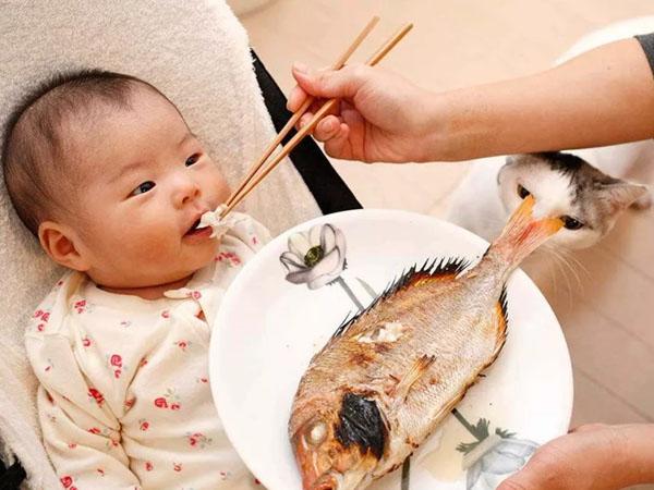 Chỉ nên cho trẻ ăn các loại thức ăn đã chế biến chín