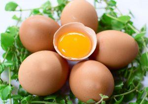 Ăn trứng giúp bé thông minh
