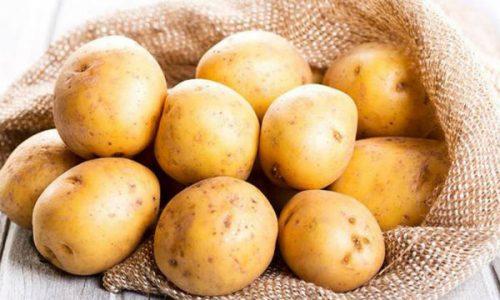 Khoai tây - 5 loại thực phẩm không nên để trong tủ lạnh dễ gây hại cho sức khỏe