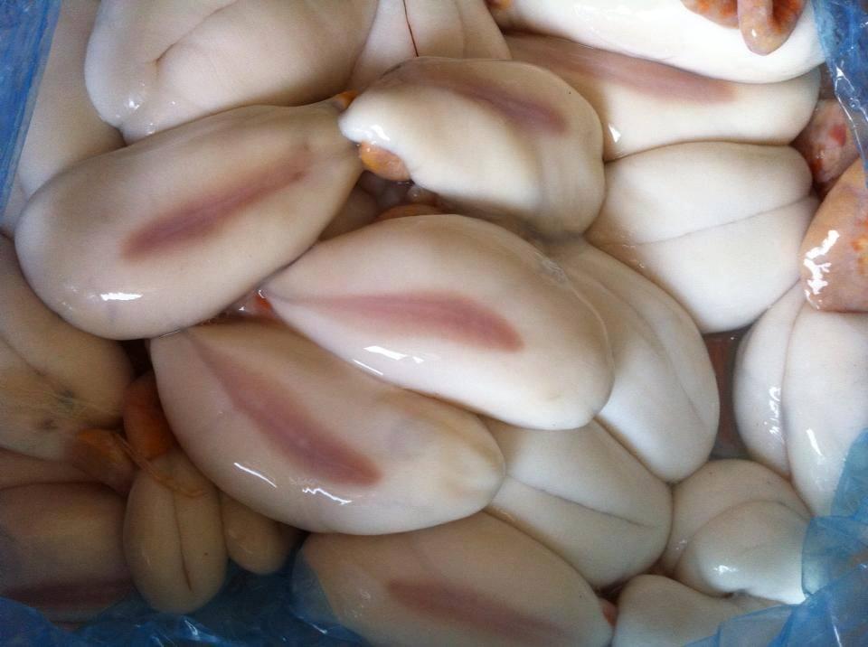 Trứng mực được xem là món ăn ngon, bổ dưỡng và rất hiếm (quý)